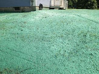 Hydroseed | Western NY | Grasshopperz Property Maintenance