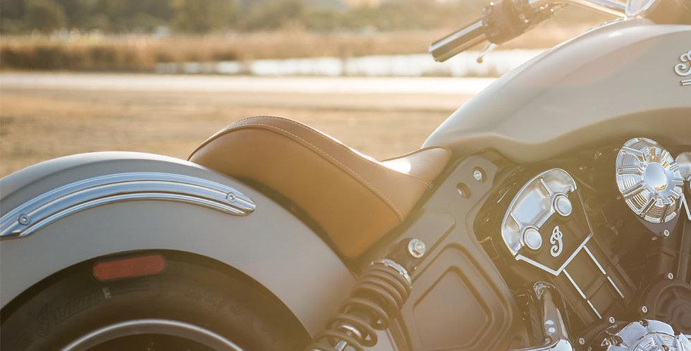 Arlen Ness - Fender Struts - Chrom - Scout / Sixty