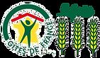 logo-3epis transp.png