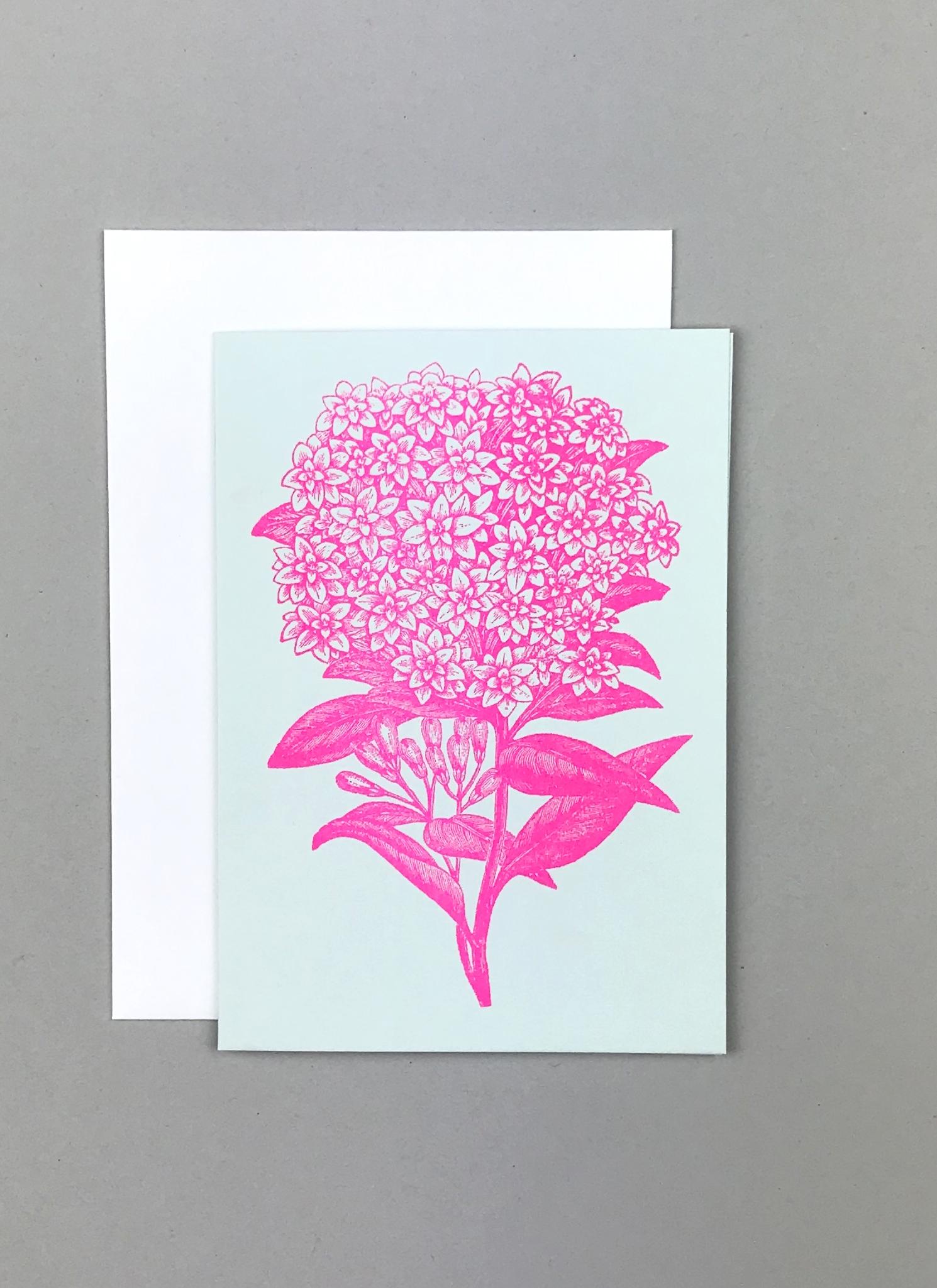 Flower Hortensie