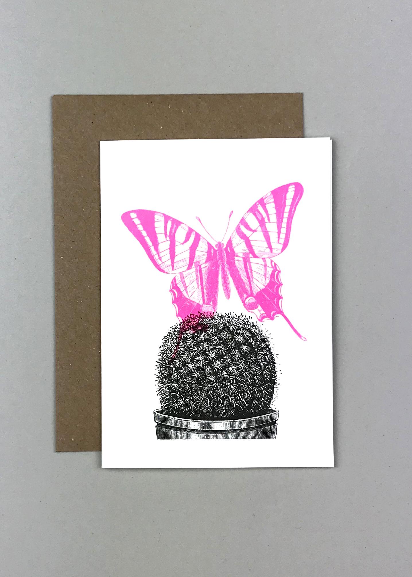 Schmetterling/Kaktus