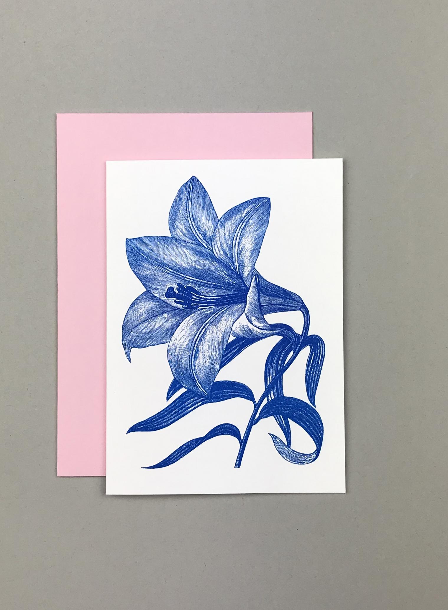 Flower Lilie