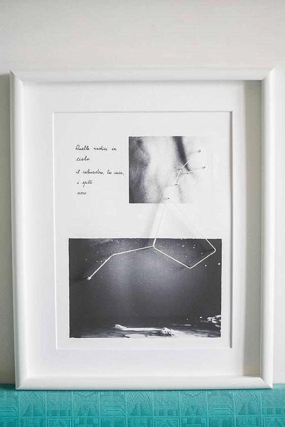 Progetto fotografico sui legami biologici con le radici - Chiara Giovanelli - Cosmosi