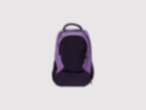 Black and Purple Backpack