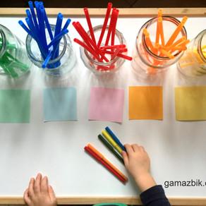 Sorter Kolorów DIY