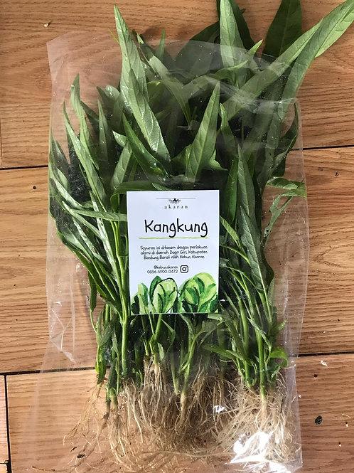 Kangkung Organik 200gr BDG