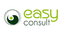 Easy Consult Logo HQ.jpeg