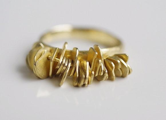 Sheaf Ring