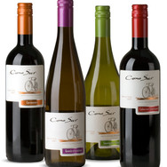 Con Sur, Organic Wines from Chile