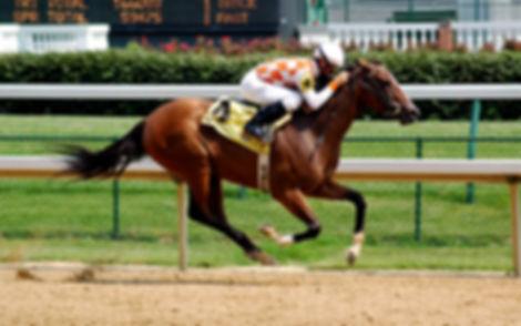 Horse Racing-hdhut.blogspot.com (8).jpg