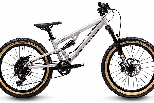 EARLY RIDER Hellion X 20""