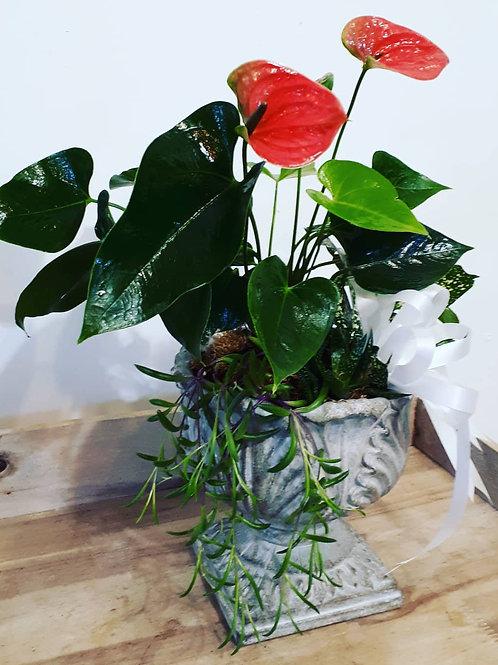 Elegant urn planter