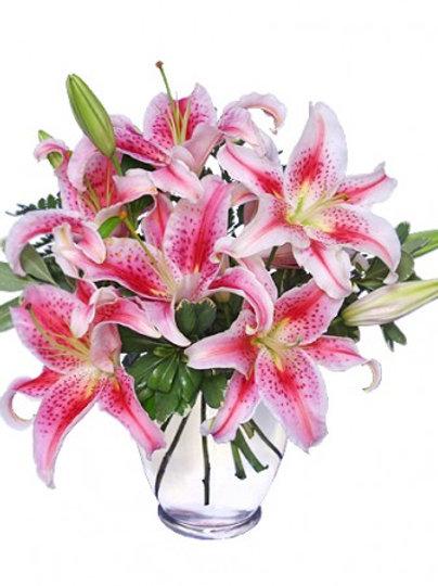 Stunning stargazers lilies