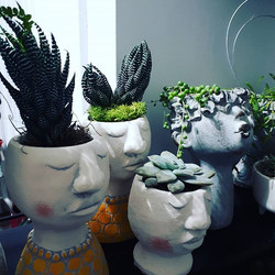 Gorgeous face pots