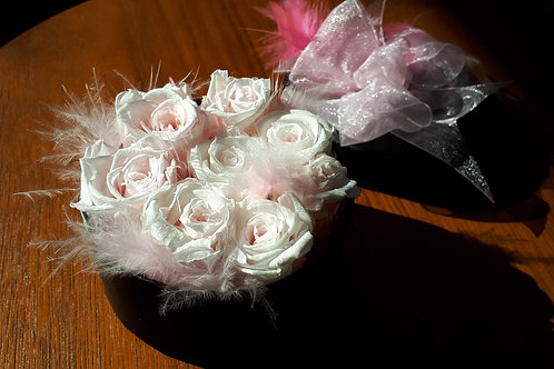 Roses and feathers