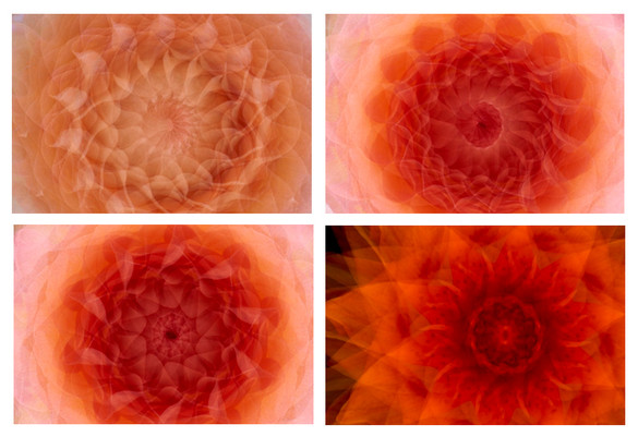 Orange Mandala