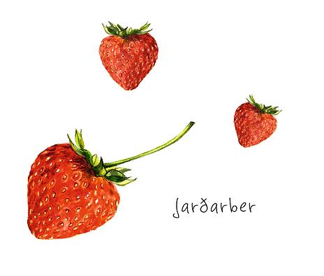 fruits-berries7.png