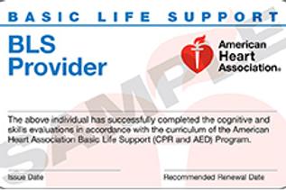 AHA BLS HealthCare Provider CPR