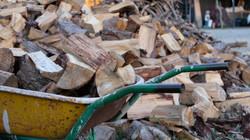 Cortando leña para la caldera de Biomasa