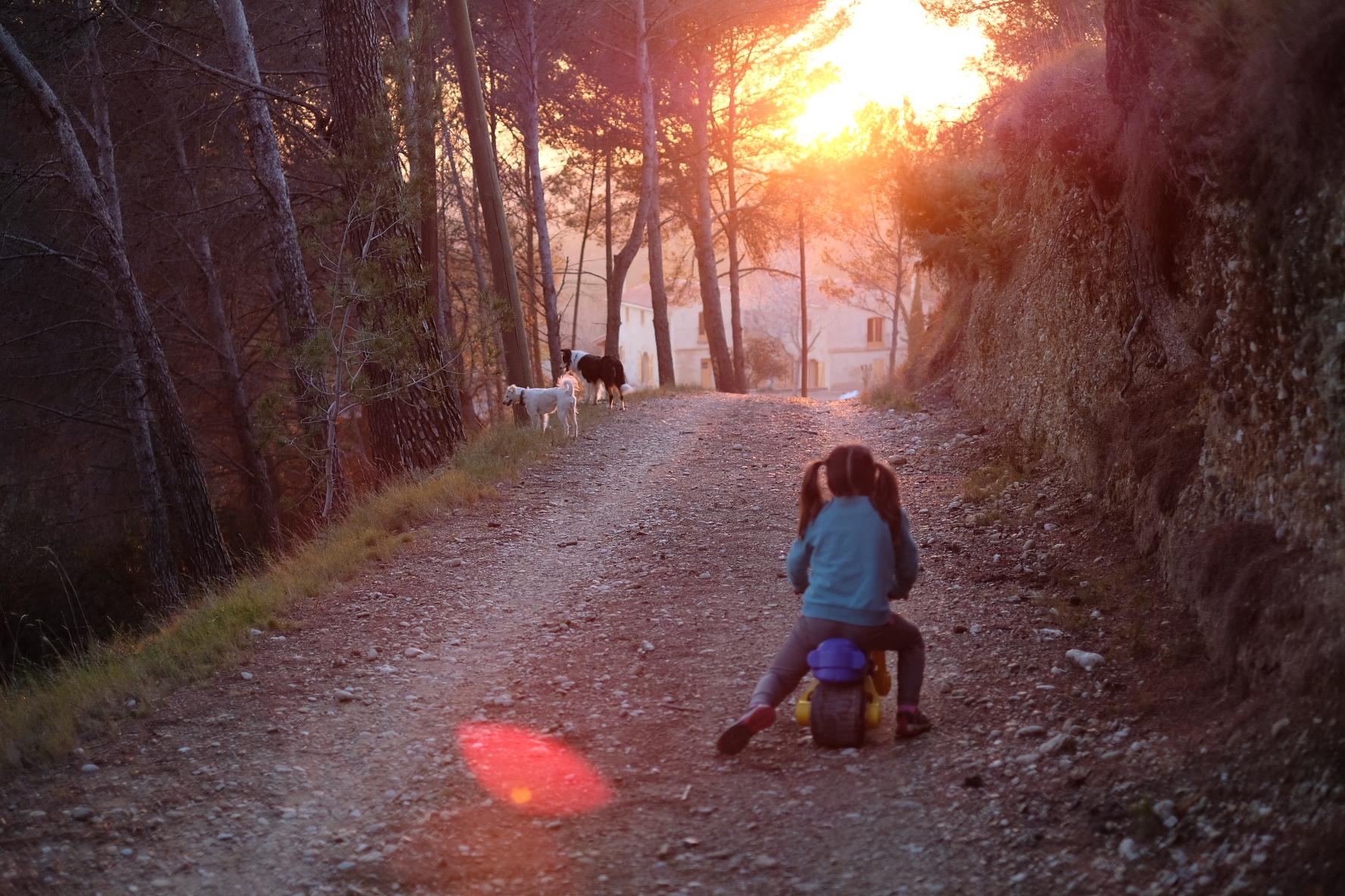 Camino a la Masía