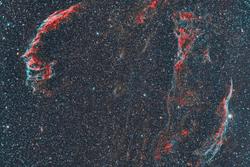 The Cygnus Loop (Veil Nebulas)