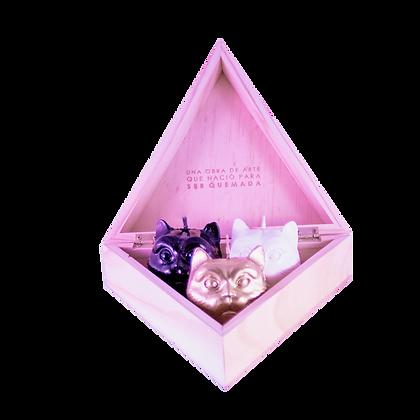 Mini Cat Set X 3