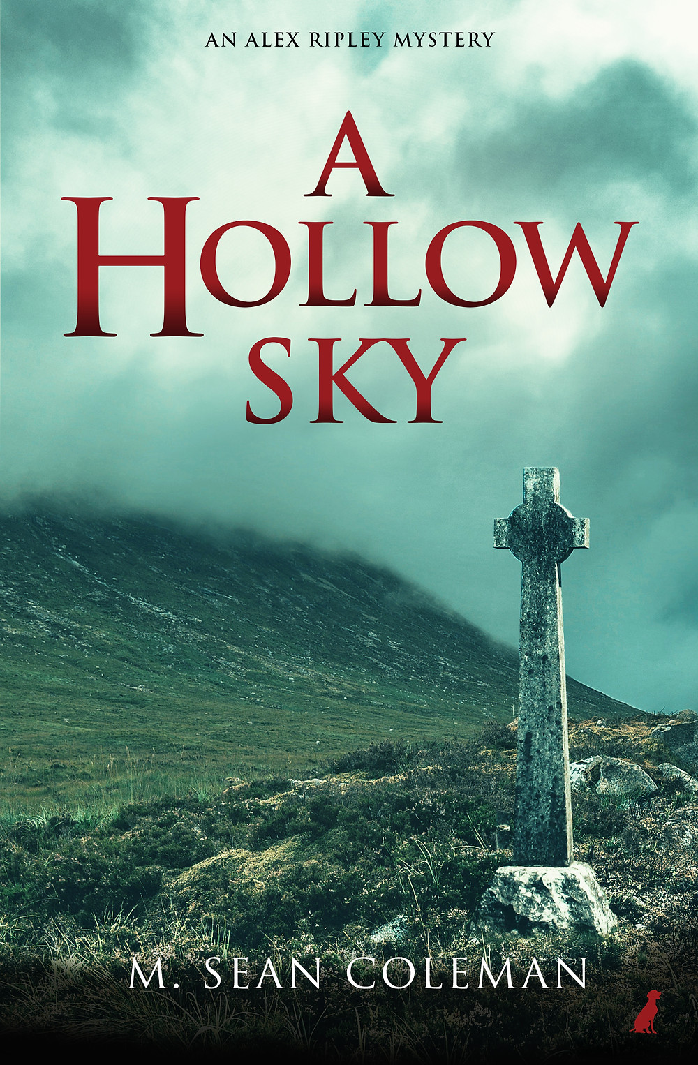 Cover image of 'A Hollow Sky' Book
