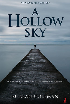 A_Hollow_Sky_eBookCover_NEW.jpg