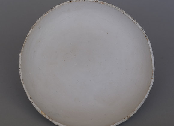 White Plate, 2020