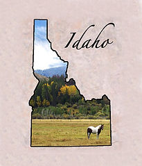Idaho Deliveries