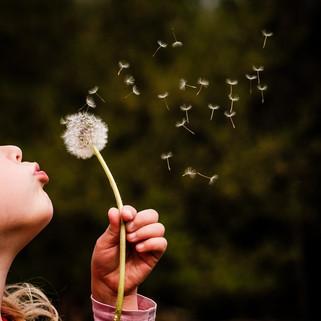 allergies au naturel