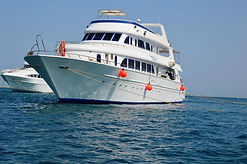 yacht-voyage-spirituel-nager-avec-les-da