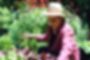 Sue Rabenstein Killian Garden Portrait.j