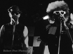The Fabulous Billygoons (6).jpg