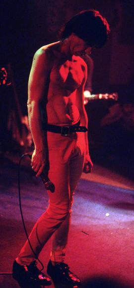 Iggy Pop (35).jpg