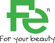 fe logo 2019.png