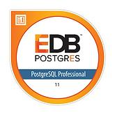 PostgreSQL Professional.png