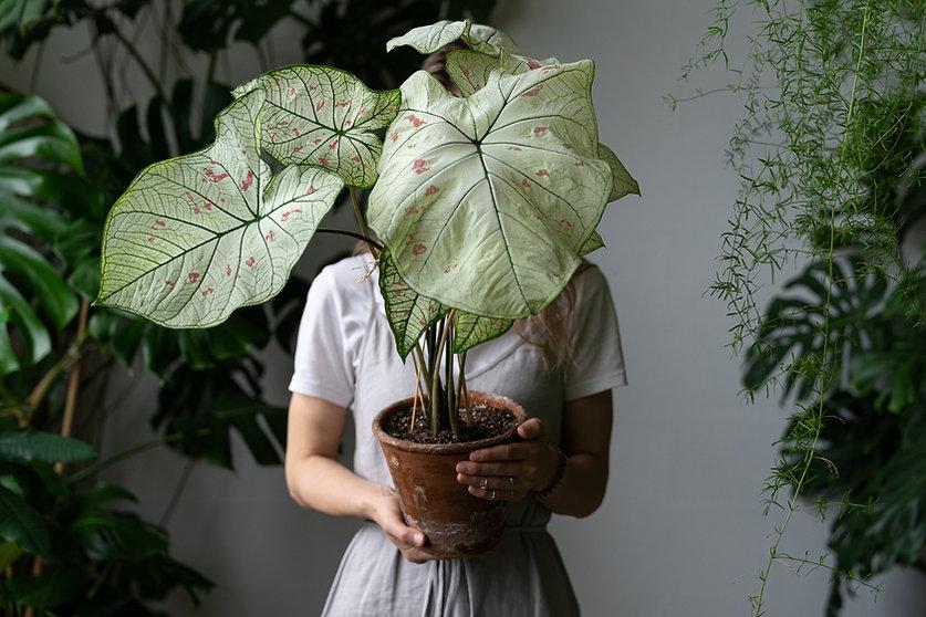 Woman gardener in a linen dress holding