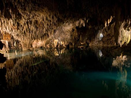 Conoce los cenotes de la Riviera Maya