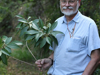 Botany 2018 Plenary Lecture by Walter and Graham Judd