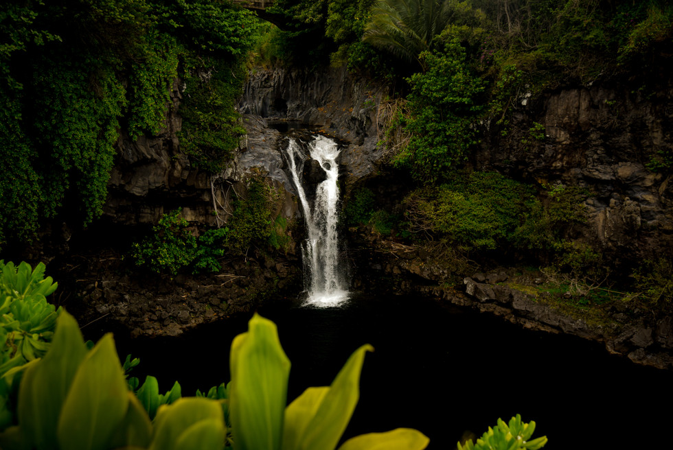 Maui-060.jpg