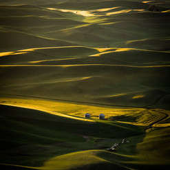 Palouse Heaven.jpg