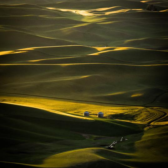 Palouse Heaven.jpg