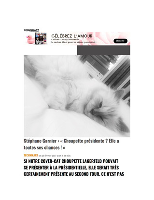Interview Technikart ! Agir et penser comme un chat ! Stéphane Garnier