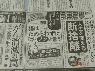 Agir et penser comme un chat dans Asahi ! Japon