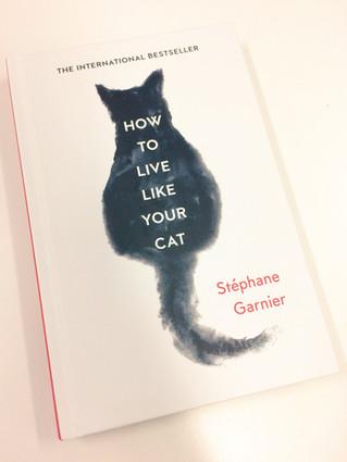 "Sortie aujourd'hui ""How to live like your cat"" (version anglaise d'agir et penser"