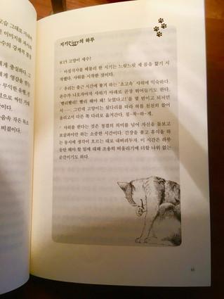 Le chat poursuit son tour du monde ! Sortie de la version coréenne d'Agir et penser comme un cha