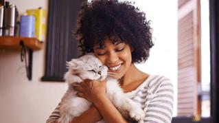 RTBF : Pour être plus épanoui, inspirez-vous de votre chat