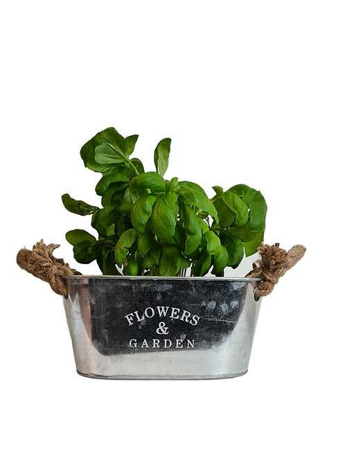 Flowers & Garden Zinc Tub with Rope Handles