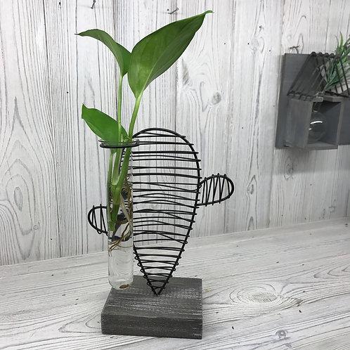 Hydroponic Home Décor - Cactus & Lab Pot